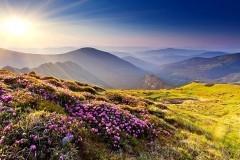 Радость разлуки. Вознесение Господне