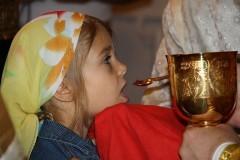 Почему вино — Кровь Христова, а хлеб — Его Тело?