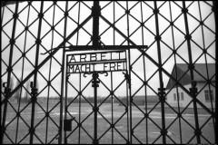 Дахау 1945: «Пылают души всех людей»