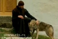 Монах и волк
