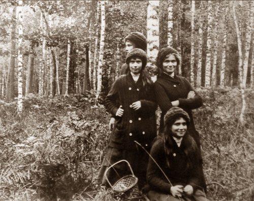 Беловежский лес, 1913
