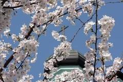 В Японии сегодня мода на христианство