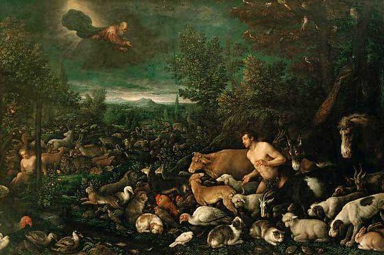 Якопо Бассано (1510-1592). Бог выносит приговор Адаму.