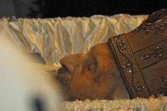 Слово к Сербии о смерти Патриарха