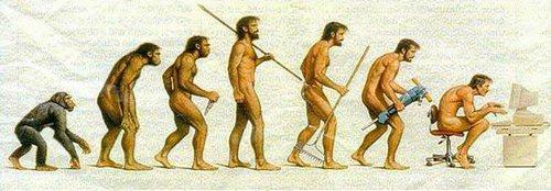 картинки развития от обезьяны к человеку