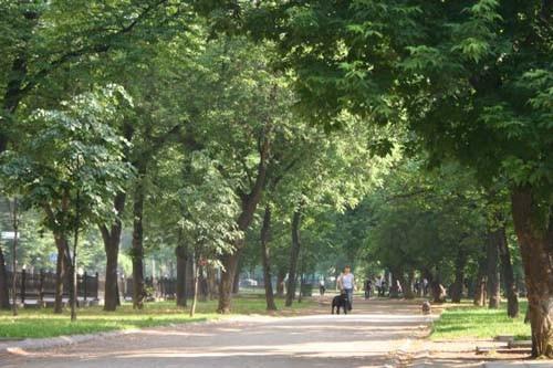По Бульварному кольцу хорошо гулять, особенно в мае, когда зелень деревьев еще не успела запылиться