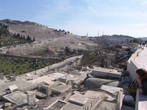 Елеонская гора. Один из ее склонов сегодня превращен в самое дорогое кладбище Иерусалима