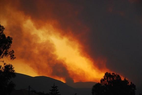 Лесные пожары в Греции, 2007 год