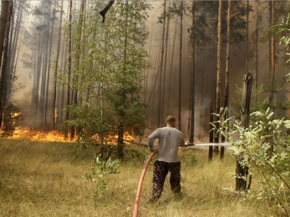 Пожарные в пригороде Воронежа