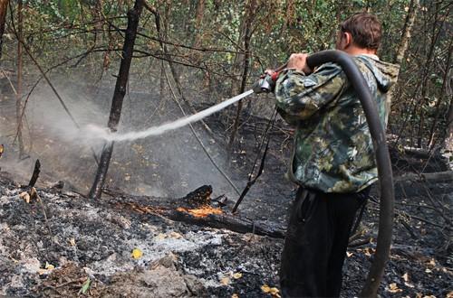К тому моменту, когда все полыхнуло, то есть к концу июля, аномальная жара стояла уже полтора месяца. А система лесхоза была разрушена уже ровно как десять лет.