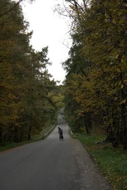 Бывшая подъездная аллея усадьбы Узкое (ныне улица Санаторная) ведет от Старой Калужской дороги (улица Профсоюзная) к Казанской церкви