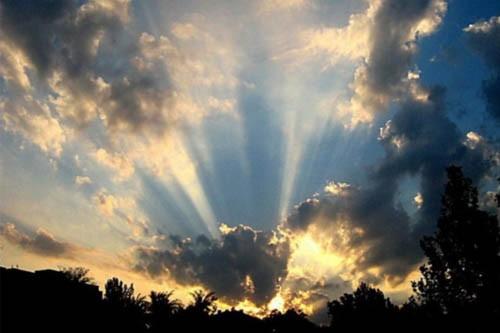 Тьма изгоняется светом, зло изгоняется добротой, и, если не получается простить, позаботиться о человеке, который причинил тебе зло, можно позаботиться о ком-то другом