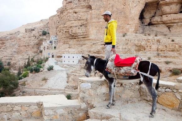 """Арабы предлагают услуги своего транспорта, громко крича: """"Такси! Такси!"""""""