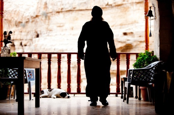 В монастыре очень любят собак, которые здесь добродушны и ласковы