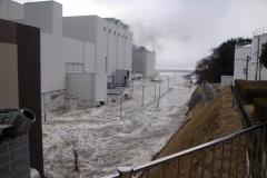Молчание о Фукусиме (+ видео)