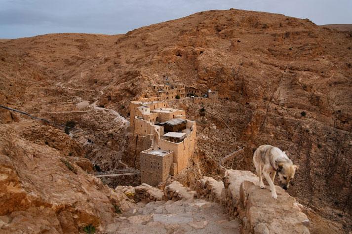Арабы-христиане (Фото) - BlogNews.am - Твой путеводитель в ...: http://blognews.am/rus/news/81463/arabiy-khristiane-foto.html