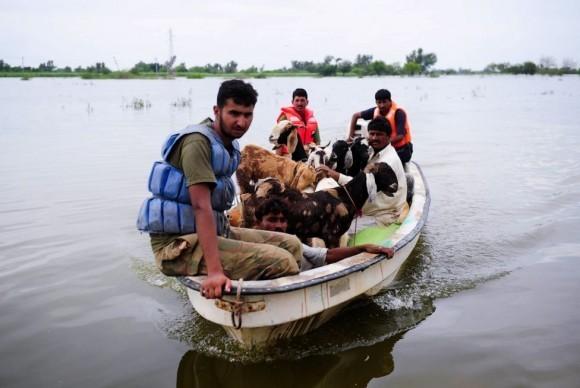 Наводнение в Пакистане (5)