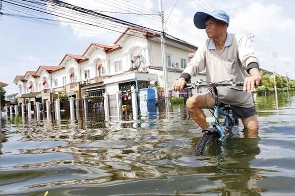 Наводнение в Таиланде (4)