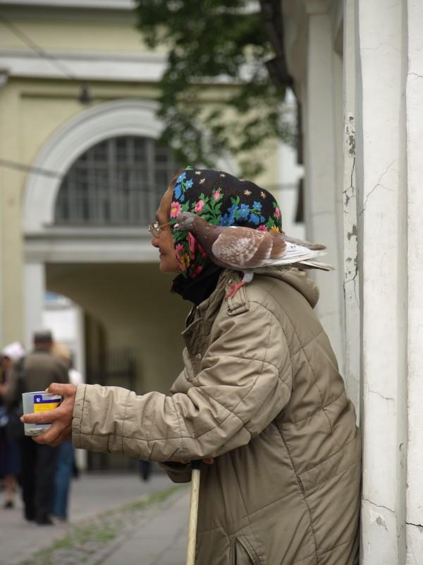 photosight.ru. Фото: Валентина Зайченко