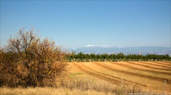 В Калифорнии многое напоминает о бывшем русском присутствии. Например, гора на горизонте называется Шаста (по-английски Shasta); а когда-то она называлась по-русски - гора Счастья.