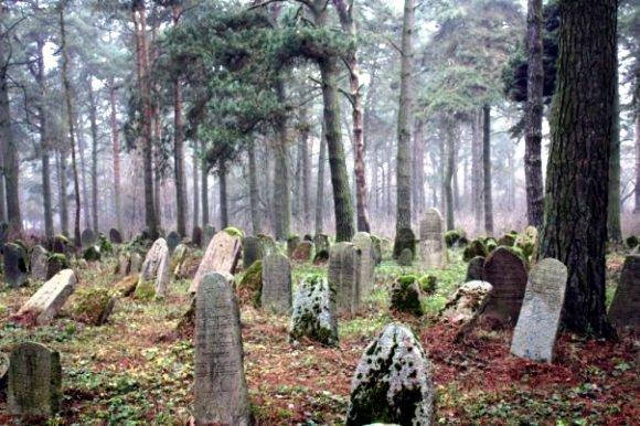 Гродно. Старое еврейское кладбище