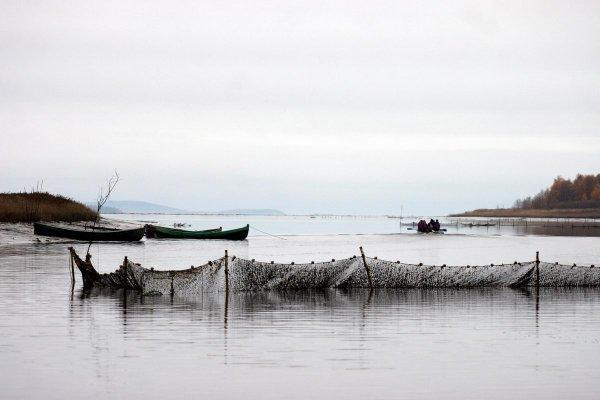 Рыбак Зоя