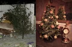 Да здравствует елка!