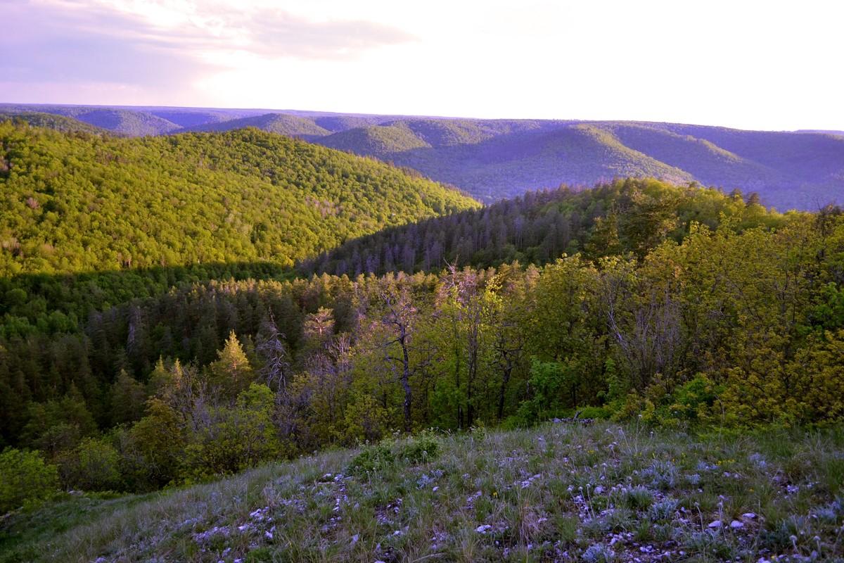 Национальный парки и заповедники России. Самарская лука