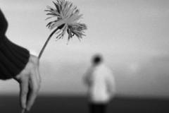 Прощение и примирение: в чем разница?