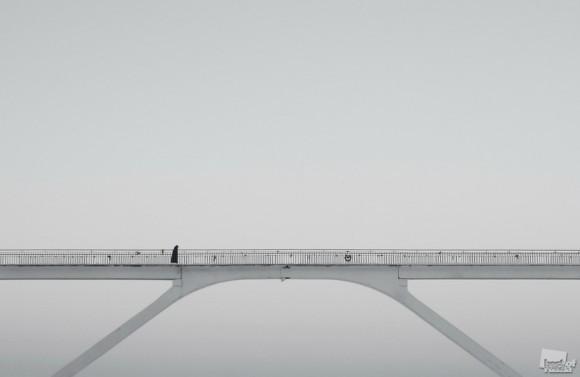 Ворона на мосту. Павел Шамин (Нижний Новгород).