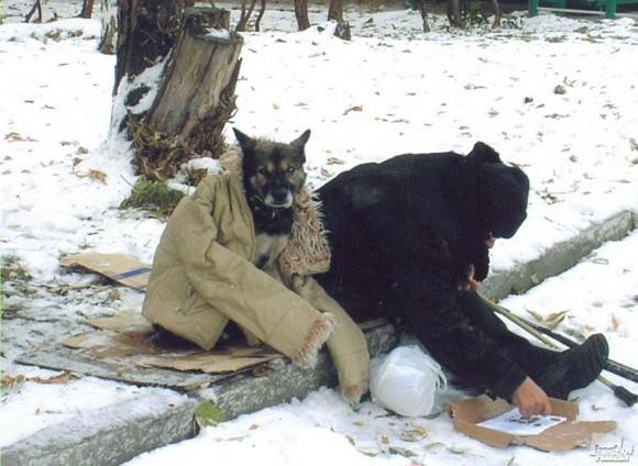 Верный друг. Александр Михайлин (Новосибирск)
