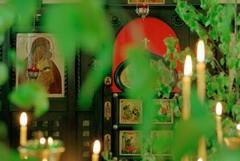 Фотоальбом священника Игоря Палкина (ФОТО)