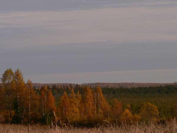Национальные парки и заповедники России. Валдайский