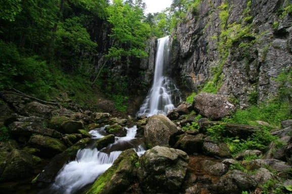Национальный парки и заповедники России. Кедровая падь
