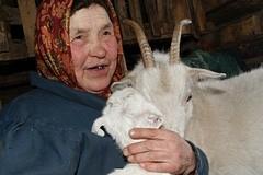 В гостях у Бурановских бабушек (ФОТО)