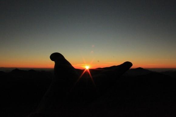 Фаулзи поймал восходящее солнце