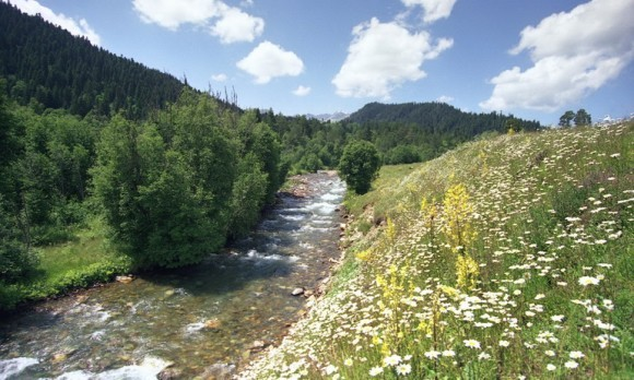 Река Архыз.