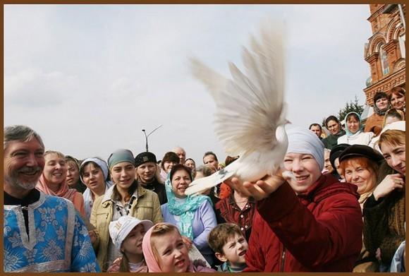 Благовещенские птицы. Фото Светланы Хохловой photosight.ru