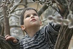 Вербное воскресенье – детский праздник