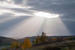 Христос и легенды о возносящихся богах