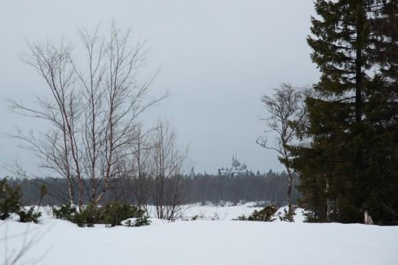 Вид на монастырь из-за леса