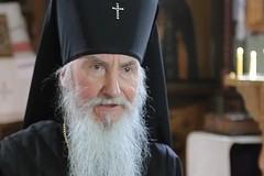 Архиепископ Берлинский Марк: Как шли к объединению