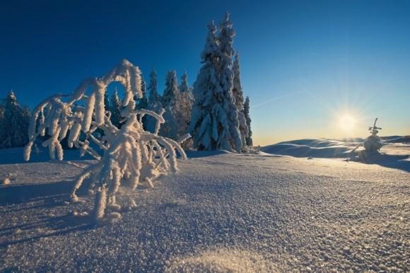 Белое море, остров Ягры. Выбор редакции.  Автор: Евгения Смолякова