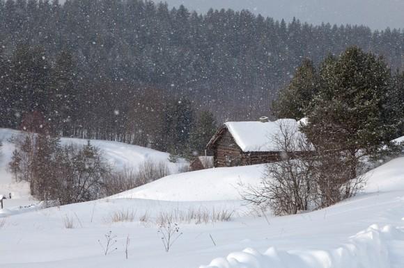 Деревня Масельга, Кенозерский национальный парк, Каргопольский сектор.  Автор: Евгения Смолякова