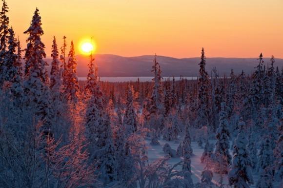 Зимнее солнце. Хибины, Кольский полуостров. Автор: Борис Вахмистров