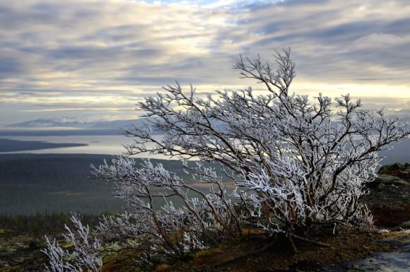 На семи ледяных ветрах. Вид с горы Нюдайвенч у Мончегорска на озеро Имандра и горный массив Хибины. Выбор редакции.  Автор: Геннадий Субач