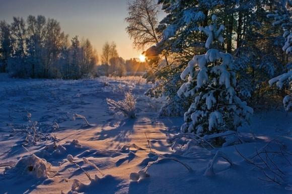 Русская зима.  Автор: Марина Мурашова