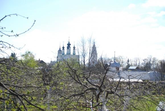 Вид на яблоневый сад Покровского монастыря