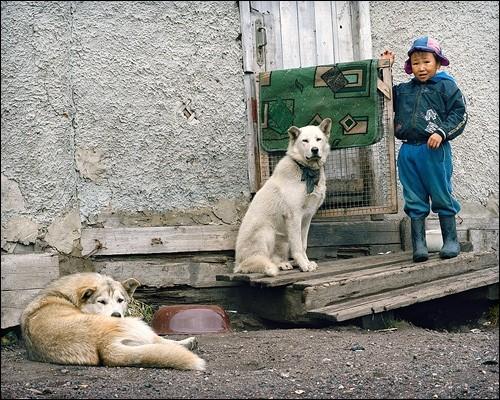 Мальчик и лайки. Поселок Лорино, Чукотка
