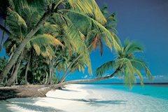 Лето, отдых, отпуска: От чего отдыхать собираемся?